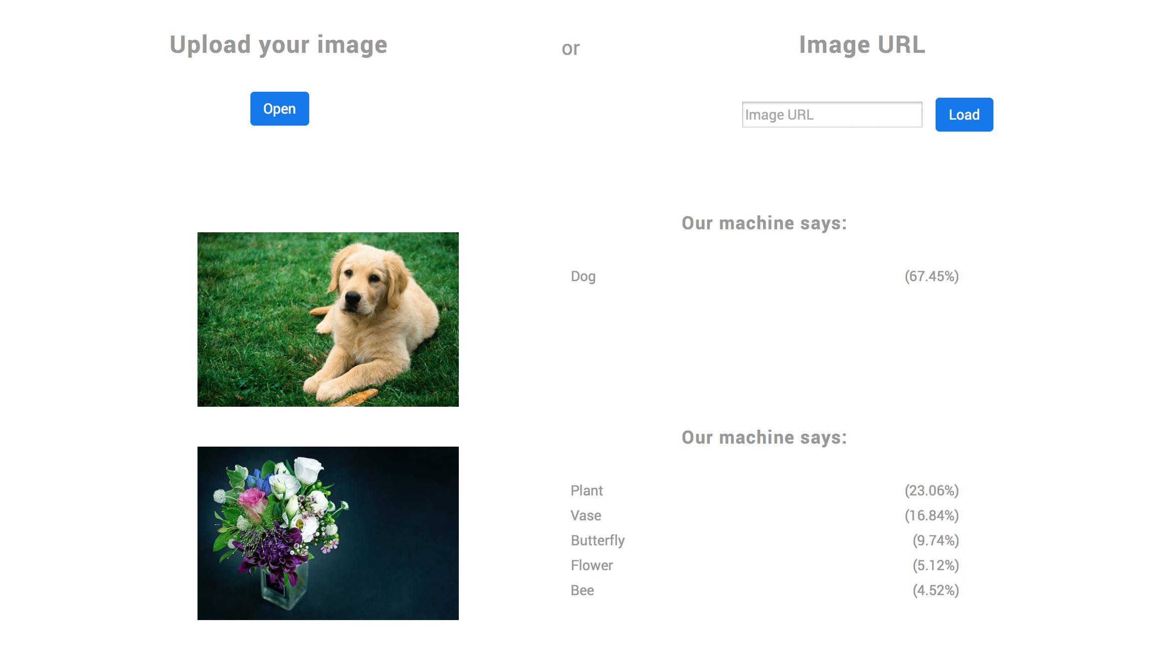 클디 홈페이지 데모를 통해 이미지를 인식해본 모습