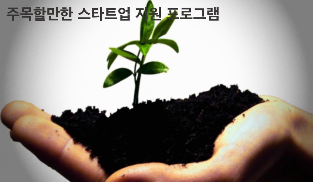 startup 지원 프로그램(수정)