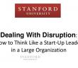 Startup vs large Org
