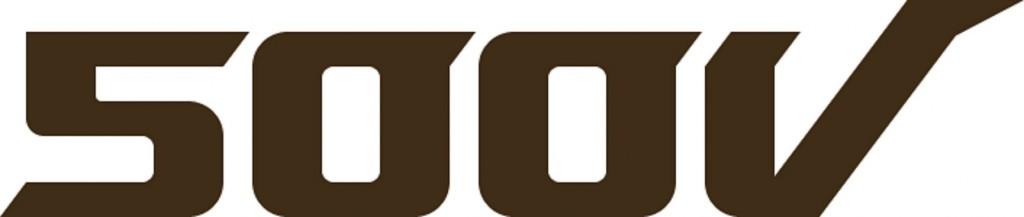 500V 로고