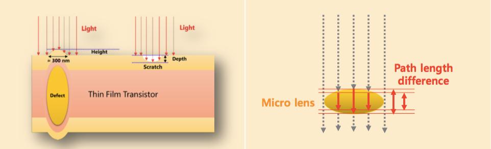 OLED 패널(좌), 마이크로렌즈(우)의 경우
