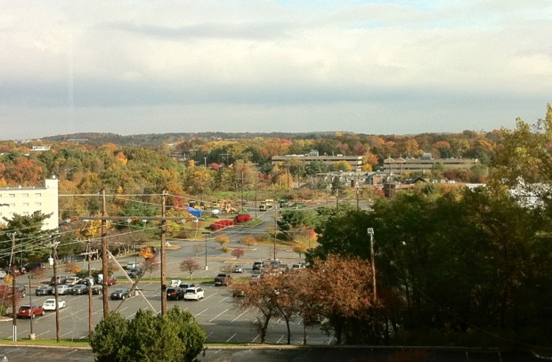 라이코스 사무실에서 바깥을 내다본 풍경. 가을 모습.