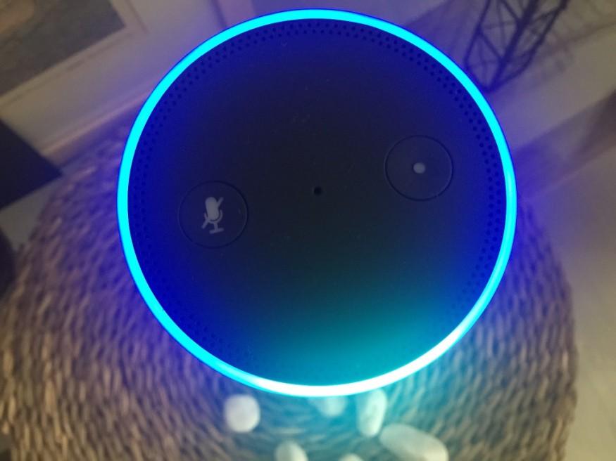 거실의 알렉사(Alexa). 처음에는 아이폰 시리(Siri) 같은 것이리라 생각했었다.